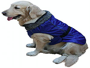 Imported Dog Jacket Blue L Puppy